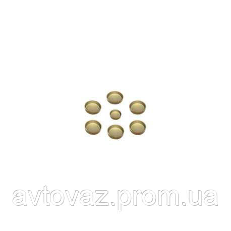 Ремкомплект заглушка блока цилиндров ВАЗ 2101-21213 (5 загл. блока, 1 загл. трампл)