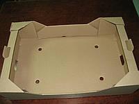 Ящик для ягод на 10 пинеток по 500 г., фото 1