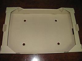 Ящик для ягод на 10 пинеток по 1000 г.