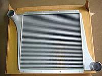 Радиатор системы охлаждения WG9725530020 (770-840мм) на погрузчик, самосвал HOWO SINOTRUK