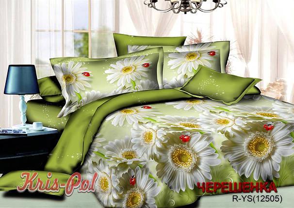 Евро макси набор постельного белья 200*220 из Ранфорса №181250 KRISPOL™, фото 2