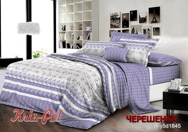 Двуспальный набор постельного белья 180*220 из Ранфорса №181845 KRISPOL™, фото 2
