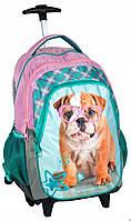 Рюкзак школьный на колесахPASORHR-997