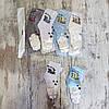 Шкарпетки Оптом щільні для хлопчиків, 4 кольори, фото 3