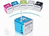 Портативний MP3-Плеєр з fm радіо TDV26 №524