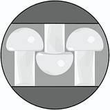 Самоклеющиеся застежки 3М Dual-Lock SJ 3560, тип 250. (25 мм  х 45 м.). Техническая застежка., фото 4