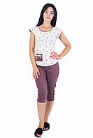 Бавовняна жіноча піжама (футболка і бриджі) 0140/180, фото 1