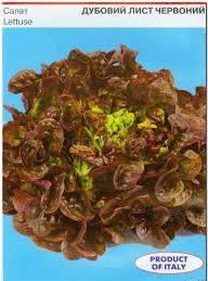 Семена салата Дубовий лист Красный 1г Коуел, фото 2