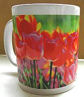 """Кружка «Тюльпаны""""  №45"""