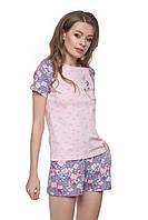 Хлопковая пижама с шортами 145/001