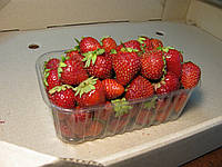 Пластиковый контейнер для клубники на 500. г. ягоды, фото 1