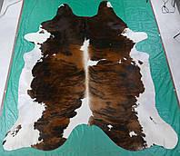 Крупная шкура буйвола тигровая натурального окраса в Одессе, фото 1