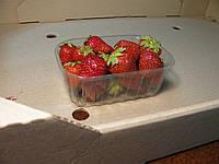 Пинетка для ягод на 250 г., фото 1