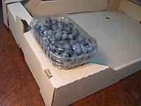 Пластиковий контейнер для 125 р. ягід, фото 1