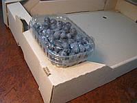 Пластиковый контейнер для  125 г. ягод, фото 1