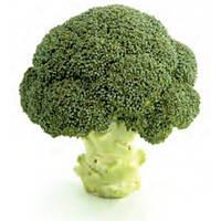Профессиональные семена овощей капусты брокколи Грин Меджик F1, Sakata Япония, в профупаковке 1 000 семян