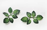 Лист розы маленький, фото 1