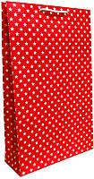 Пакет бумажный подарочный большой вертикальный крафт 41*24,5см W3-4k