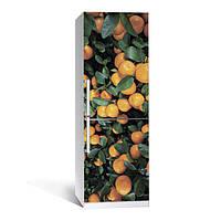 Виниловая наклейка на холодильник Цитрус 01 ламинированная двойная (пленка самоклеющаяся фотопечать)
