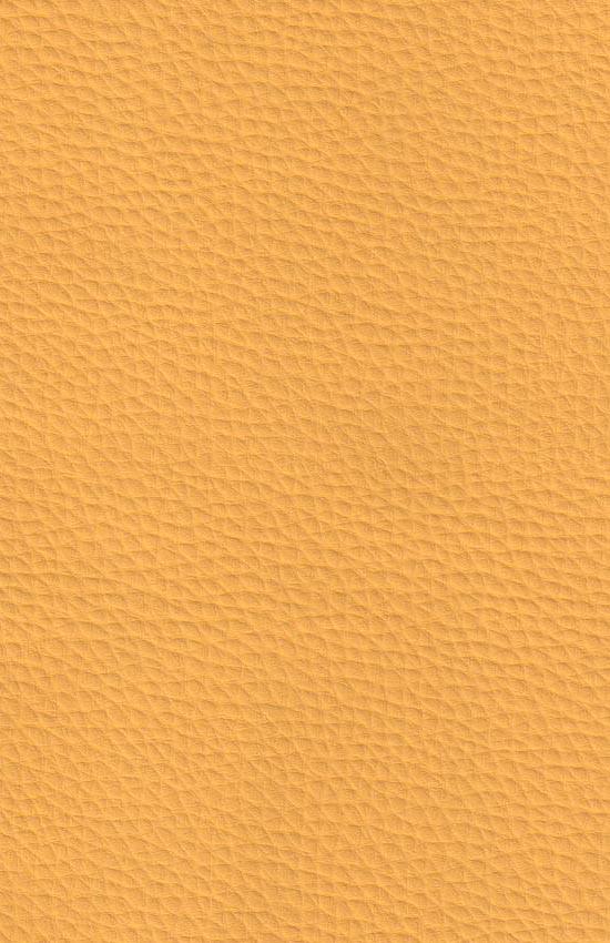 Искусственная кожа мебельная Поланд цвет 13