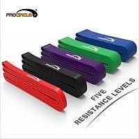 Резиновые петли комплект PROCIRCLE . Резина для подтягивания НАБОР 5 шт+ Сумочки для хранения. Эспандер.