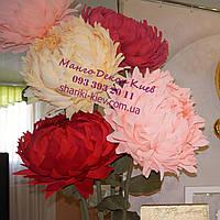 Большие цветы Пион Ростовой 65 см в диаметре из Гофробумаги