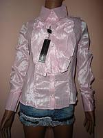 Блуза розовая размеры 36