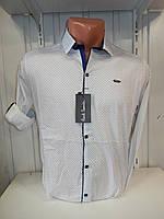 Рубашка мужская Paul Smith длинный рукав, мелкий узор, 20.08.2018 №4, стрейч 003 \ купить рубашку