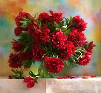 Картина-раскраска .Menglei Красные пионы худ. Никончук, Дарья (MG1133) 40 х 50 см