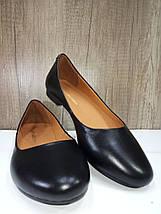 Классические кожаные балетки на низком ходу маленьких размеров ANRI DE COLLO 301/24, фото 3