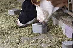 Соль-лизунец CALPHOS BLOCK 5 кг (ROYAL ILAC, Великобритания-Турция)