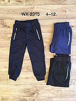 Спортивные штаны для мальчиков оптом, F&D, 4-12 лет,  № WX-2315, фото 1