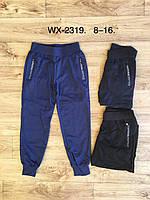 Спортивные штаны для мальчиков оптом, F&D, 8-16 лет,  № WX-2319, фото 1