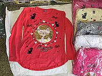 Батник для девочки на 6-10 лет красного, серого, розового,белого цвета котик перевертыш оптом