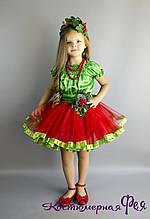 Калина,карнавальний костюм (код 44/20)