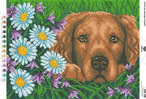 А3Н_198 . Схема для вишивки бісером Собака