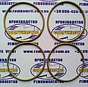 Ремкомплект сервоцилиндра насоса НП-90 ГСТ-90 комбайн Дон (фторкаучук ИРП1287), фото 2