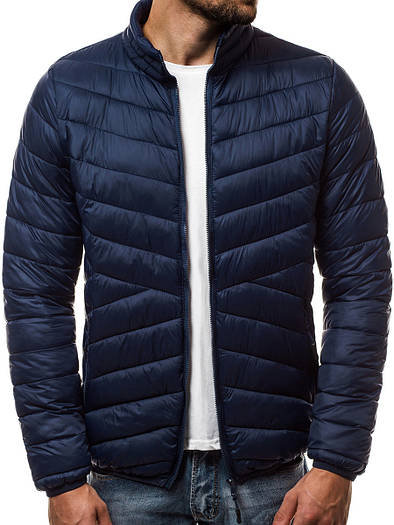 Мужская демисезонная куртка без капюшона №1 Синий