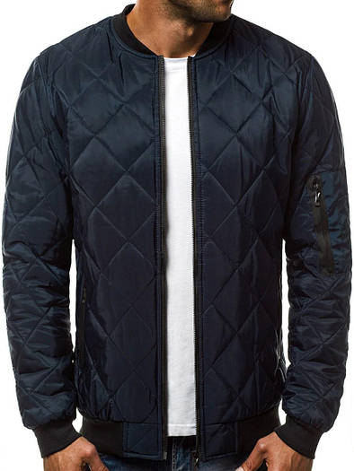 Стёганая мужская демисезонная куртка цветная #1 Синий