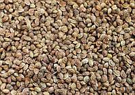 Семена Эспарцет Песчаный