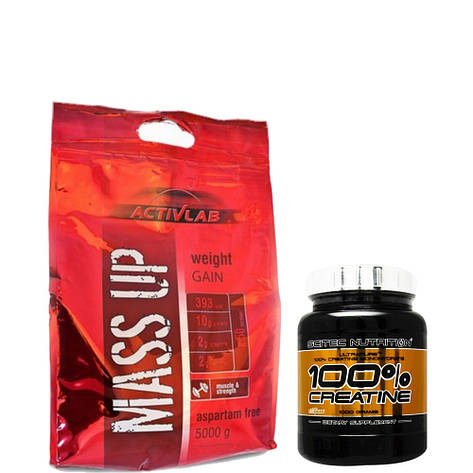 Гейнер ACTIVLAB MASS UP 5 кг + Creatine 100% Scitec Nutrition 500 г, фото 2