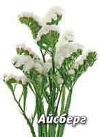 Семена кермека Айсберг, 5 гр., белый