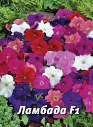 Семена петунии Ламбада F1, 100 сем., многоцветковая смесь
