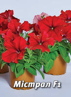 Семена петунии Мистрал F1, 100 сем., крупноцветковая ярко-красная