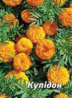 Семена бархатцев Купидон, 5 гр., золотисто-желтые, африканские