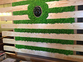 Декор мхом деревянной панели