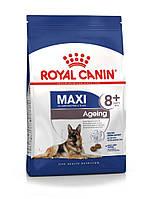 Royal Canin (Роял Канин) Maxi Ageing 8+ - для собак крупных пород старше 8 лет, 15кг.
