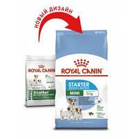 Royal Canin (Роял Канин) Mini Starter - первый твердый корм для щенков мини пород, 3кг
