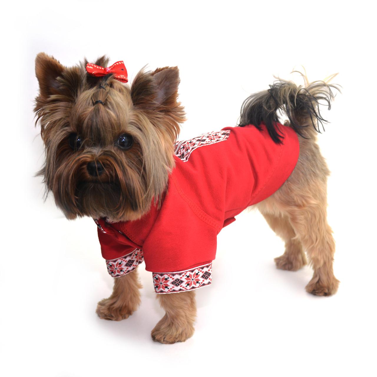 Рубашка Вышиванка для собак №7 72х116 - Интернет-магазин