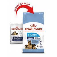 Royal Canin (Роял Канин) Maxi Starter - первый твердый корм для щенков крупных пород, 15кг.